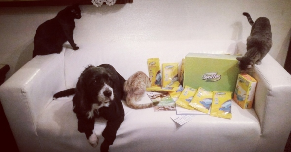 swiffer_pet_lovers3