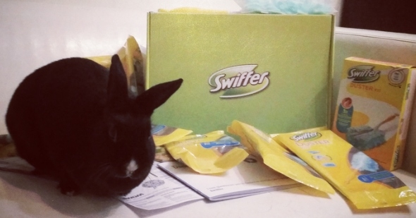 swiffer_pet_lovers4